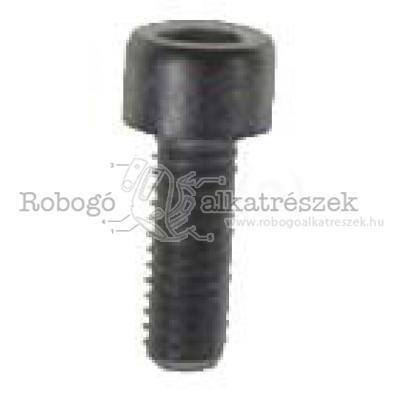 Hex Socket Screw M6X16