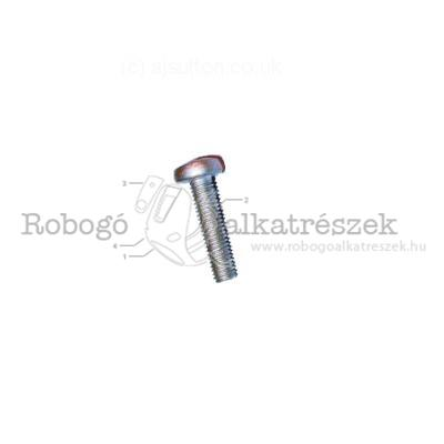 Screw For Oil Pump (M5X