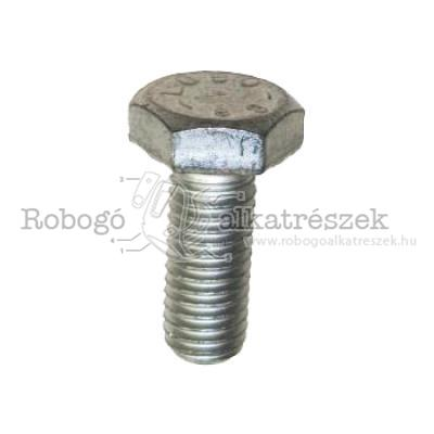 Hex Screw M10X25, Scara