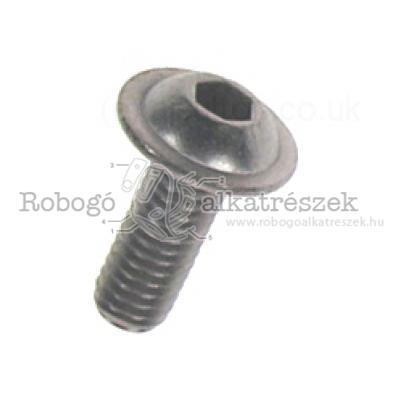 Screw W/ Flange M6X16