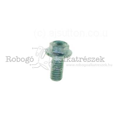 Screw W/ Flange M6X12