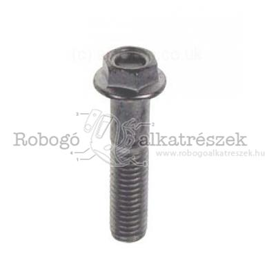 Screw W/ Flange M8X35