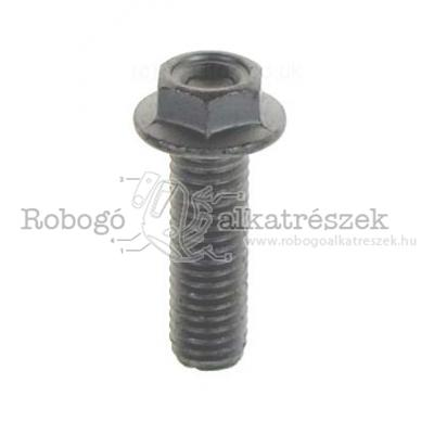 Screw W/ Flange M8X25