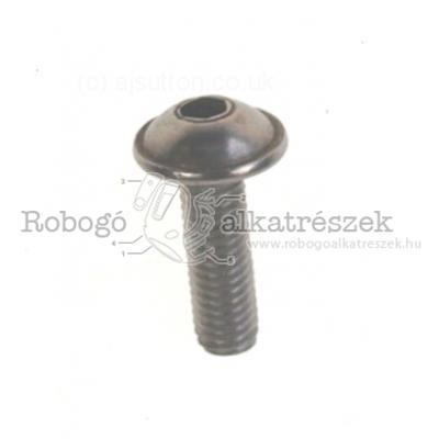 Screw W/ Flange M5X16