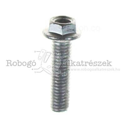 Screw W/ Flange M8X30