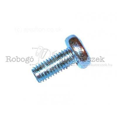 Flywheel Magneto Screw