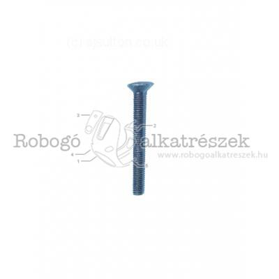Flat Head Screw (M6X55)