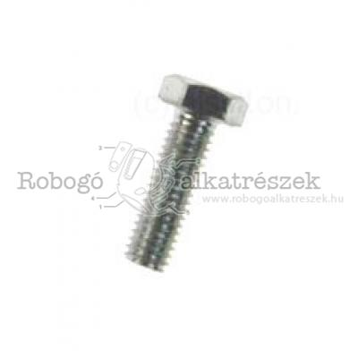 Bolt For Caliper Bracke