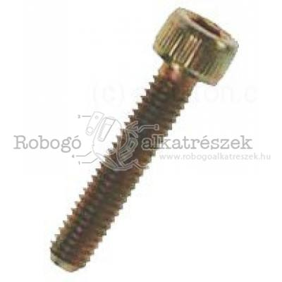 Hex Socket Screw M6X30