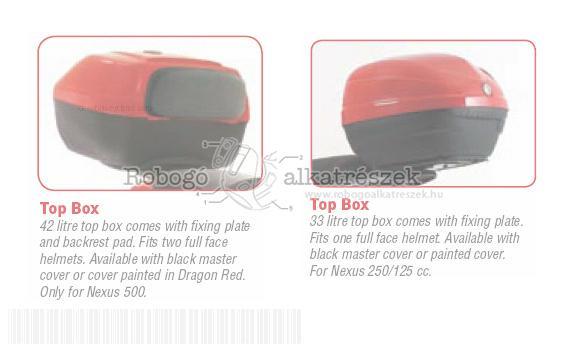Top Box - Gilera Nexus 500 (Euro 3) M352M 2007 ZAPM35200